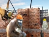 Work On The Wild Side - Monkey Builders