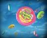 bubble-gum-tape-target_10