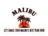 malibu - End Logo