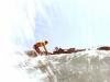 Mission Beach USA - Surfing