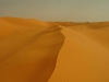SAR Shoot Photo - Beautiful dunes