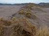 sand dunes symmetry