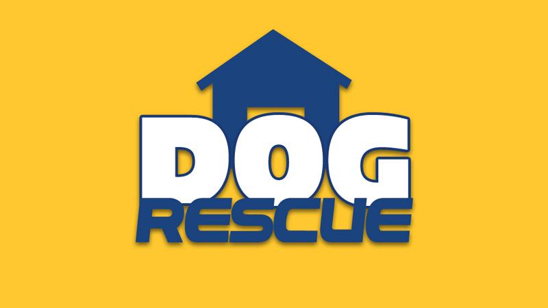 Pedigree Dog Rescue Centres